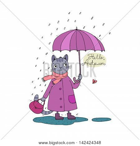 Cute cartoon cat, umbrella, rain and puddles. Hand drawing isolated objects on white background. Vector illustration. Hello, Autumn.