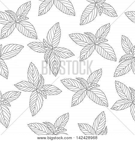 Mint sketch seamless texture mint doodle style background wallpaper. Vector illustration