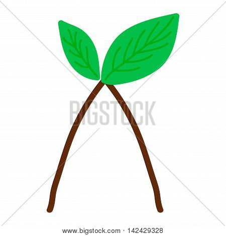 Green leave design element. Nature leaf icon vector illustration friendly nature eco elegance symbol. Decoration flora leaf. Natural element ecology symbol green organic tree.