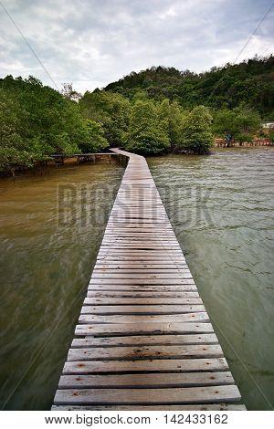 Wood bridge to mangrove island look old.