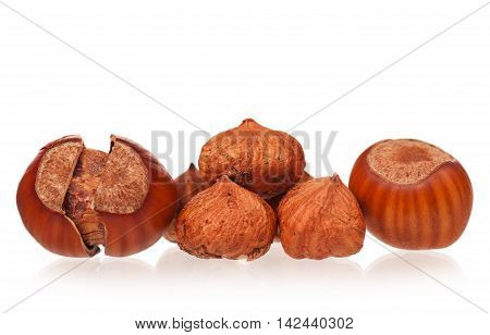 Ripe filberts with cleared kernels of nuts isolated on white background close-up