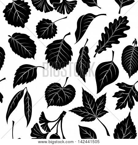 Seamless Nature Background with Black Pictogram Tree Leaves, Oak, Willow, Liquidambar, Hawthorn, Poplar, Aspen, Hazel, Ginkgo Biloba, Elm, Birch, Alder, Linden, Hornbeam, Chokeberry and Lilac. Vector