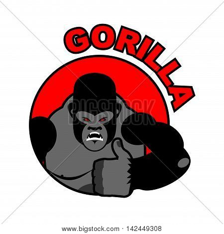 Gorilla Shows Well. Sign All Right. Thumbs Up. Hand Showing Ok. Gesture Of Hand. Angry Monkey With B