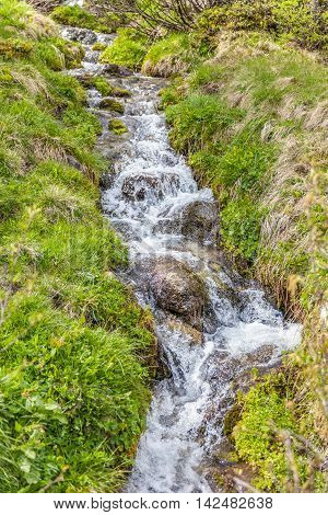 Mountain stream in a meadow in the rear at Ahrntal Kasern Tyrol Italy