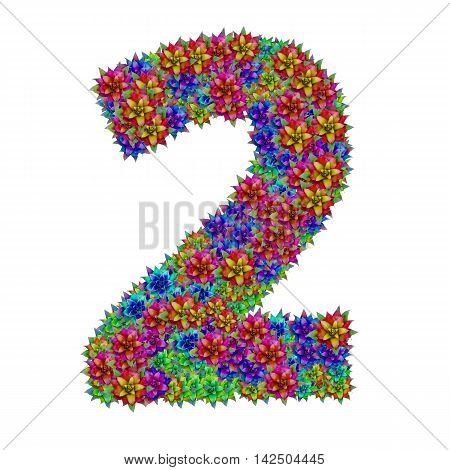 Number 2 made from bromeliad flowers isolated on white background with clipping path
