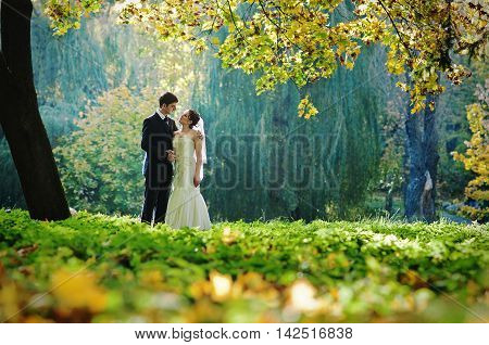 Awesome Picture Of Wedding Couple In Fairy Autumn Forest