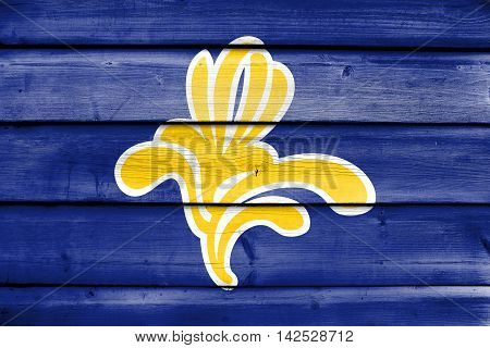 Flag Of Brussels Region, Belgium 1991 - 2015, Painted On Old Wood Plank Background