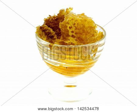 tasty honeycomb on the white background. Tasty sticky gold honey combs with fresh honey.