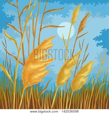 Stylized landscape in vibrant colors. Yellow reed leaves. Meadow grass in the foreground. Blue sky with wavy cloud. Floral vector illustration.
