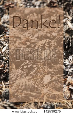 Vertical Texture Of Fir Or Pine Cone. Autumn Season Greeting Card With Copy Space For Free Text. German Text Danke Means Thank You