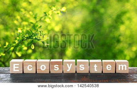 Word ecosystem on wooden blocks. Ecological concept.