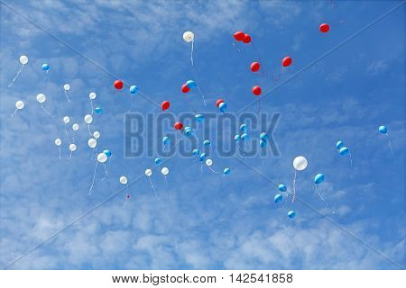 Rubber colored balloons flying in blue sky