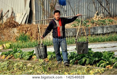 Pengzhou China - January 24 2014: Farmer crossing a field on his farm carrying water buckets suspended from a shoulder yoke