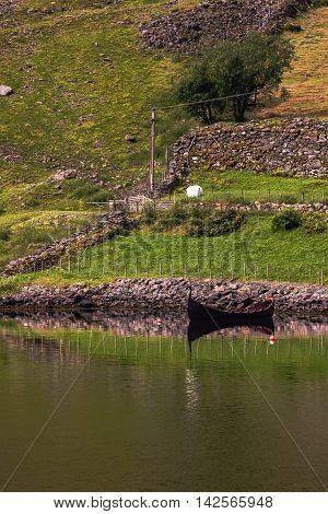 Old Viking Boat On Norwegian Fjord, Flam