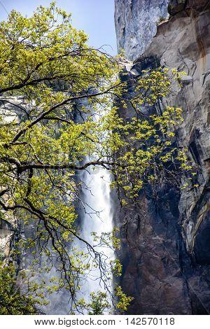 Yosemite Beautiful Waterfall