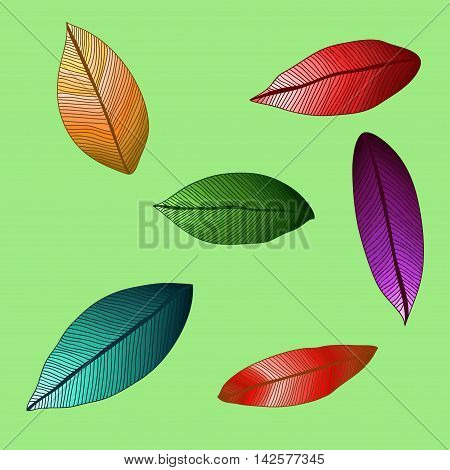 vector colored leaves with degrade. Foliage on green background