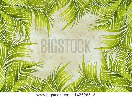 old paper background with green palm leaf