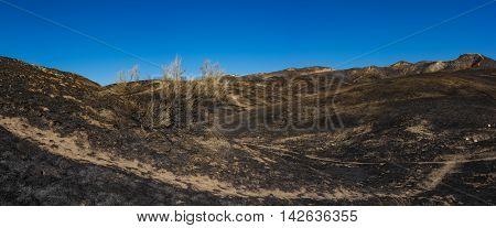 Wildfire Burned California Hills