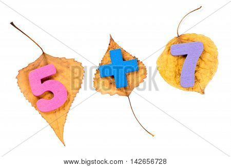 Addition of two numbers five and seven. Colorful wooden arithmetic symbols on the autumn leaves isolated  on white