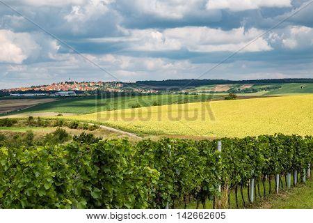View Of The Village Boretice