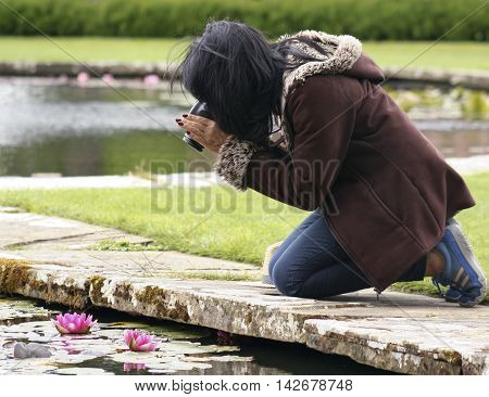 A Woman Kneels at a Pond's Edge to Photograph a Pink Water Lily