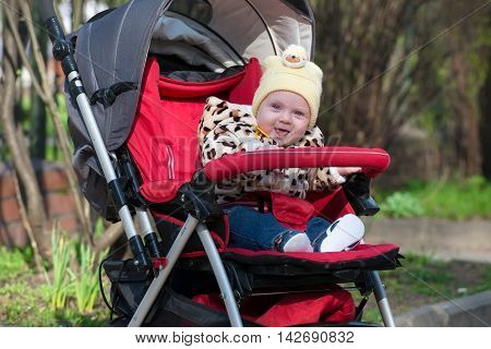 Happy Baby sitting in stroller on nature