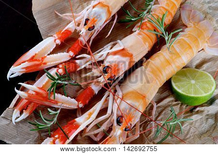 Three Delicious Raw Langoustines with Lime and Rosemary Cross Section on Parchment Paper