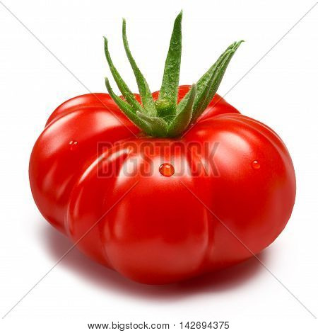 Heirloom Tomato (togorific), Paths