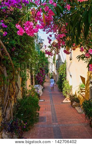 Alley In The Old Town Of Antibes, France