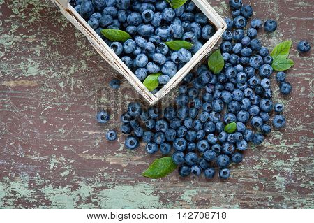 Top view of blueberries with green leaves