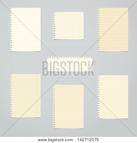 Brown, ruled and math blank notebook paper sheets are stuck on light gray background.