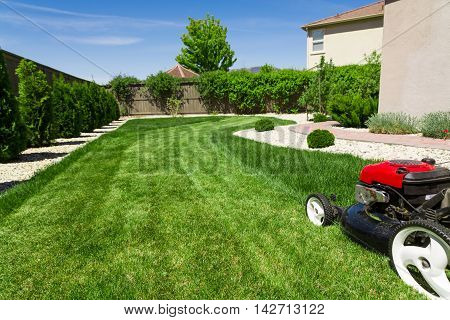 Lawn mower on green backyard lawn in sunny day