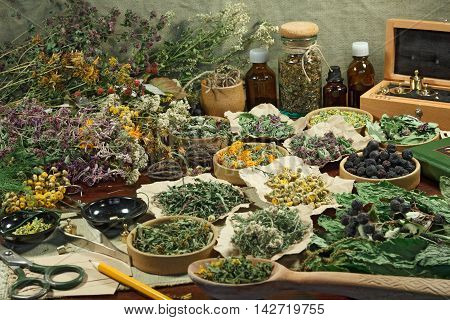 Set healing herbs. Dried herbs for use in alternative medicine.Herbal medicine phytotherapy medicinal herbs.For preparation of infusions decoctions tinctures powders ointments tea.