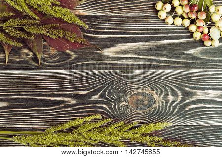 An Autumn Leaves on a Wooden Background. Flat Top View.