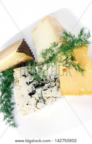 soft delicatessen chesses on white ceramic plate