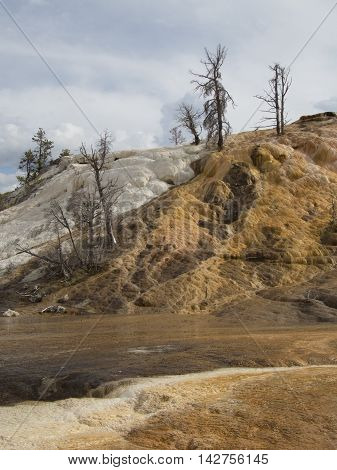 The different layers on a hill side in Yellowstone National Park look as though paint is running down the hill.