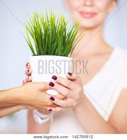 Beautiful woman holding pot with a plant.
