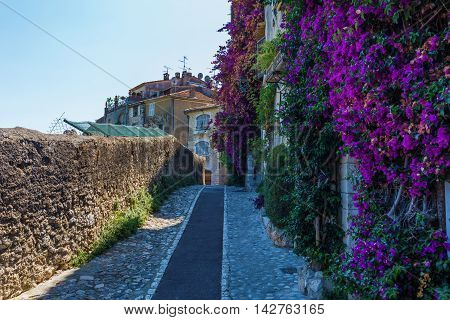 Alley In Saint-paul-de-vence, Provence, France