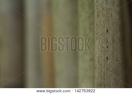 Close-up photo of the posts of a bamboo fence.
