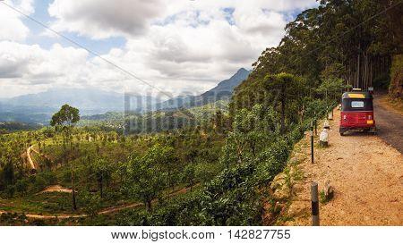 Narrow Road in Central Highlands, Sri Lanka