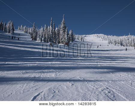 Skiing Downhill