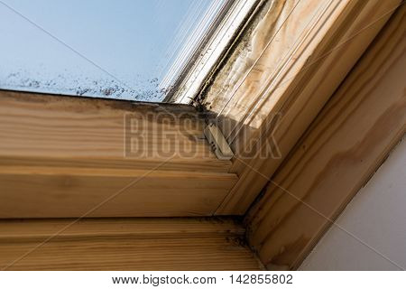 On skylights mildew forms by inadequate ventilation