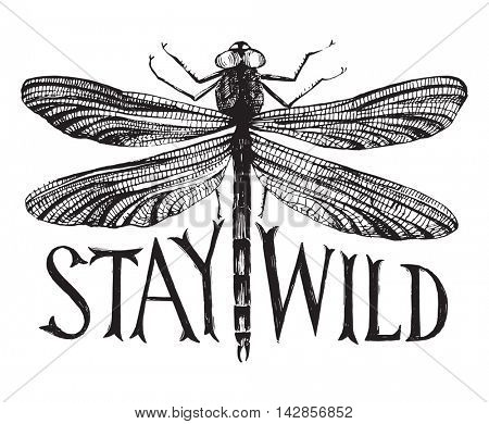 Black dragonfly with hand drawn lettering - stay wild poster