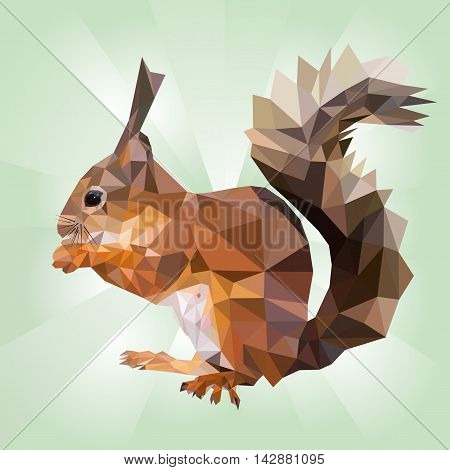polygonal illustration of squirrel eating nut, isolated