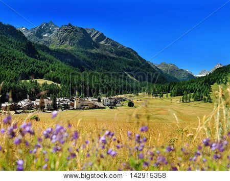 view on mountain village Rhemes Notre Dame from hayfield