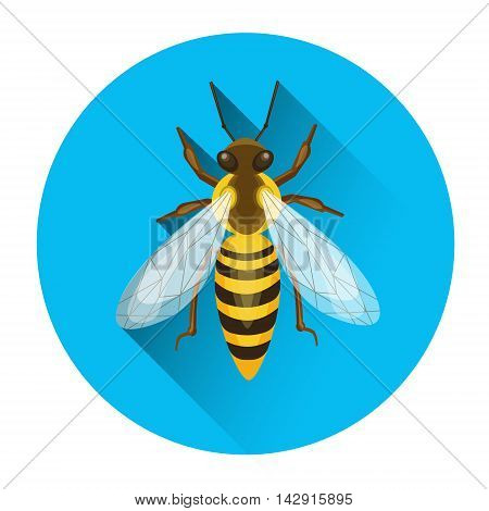 Bee Honey Insect Apiary Icon Vector Illustration