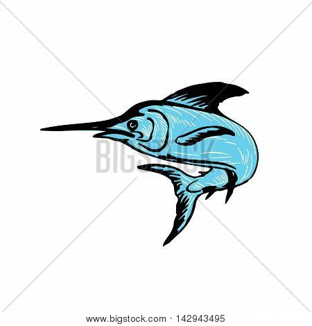 Drawing sketch style illustration of a blue marlin fish jumping viewed from side set on isolated white background.
