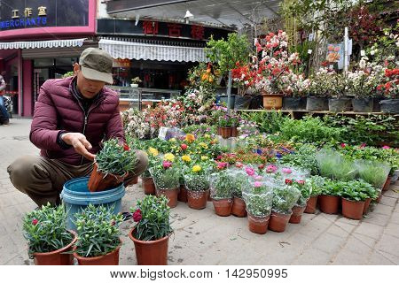 SUZHOU CHINA - MARCH 22: Unidentified Chinese people trade flowers on March 22 2016 in China. Suzhou is a major economic center and focal point of trade and commerce in Jiangsu Province China