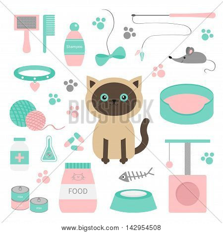 Cute siamese cat in flat design style. Suff set. Paw print scrathing rope post bed shampoo brush collar clew ball food plate bowl pill bow mouse fish White background Isolated Vector