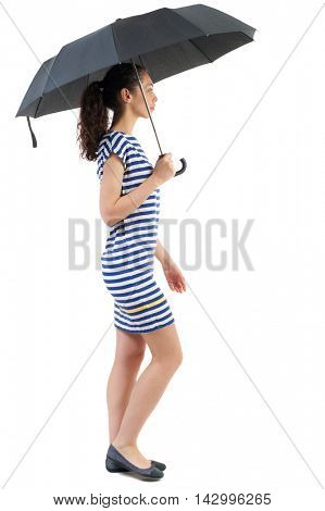 young woman in dress walking under an umbrella. Rear view people collection.  backside view of person.  Isolated over white background. Swarthy girl in a checkered dress walks under a black umbrella.